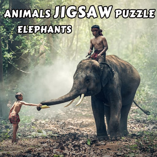 A animal game